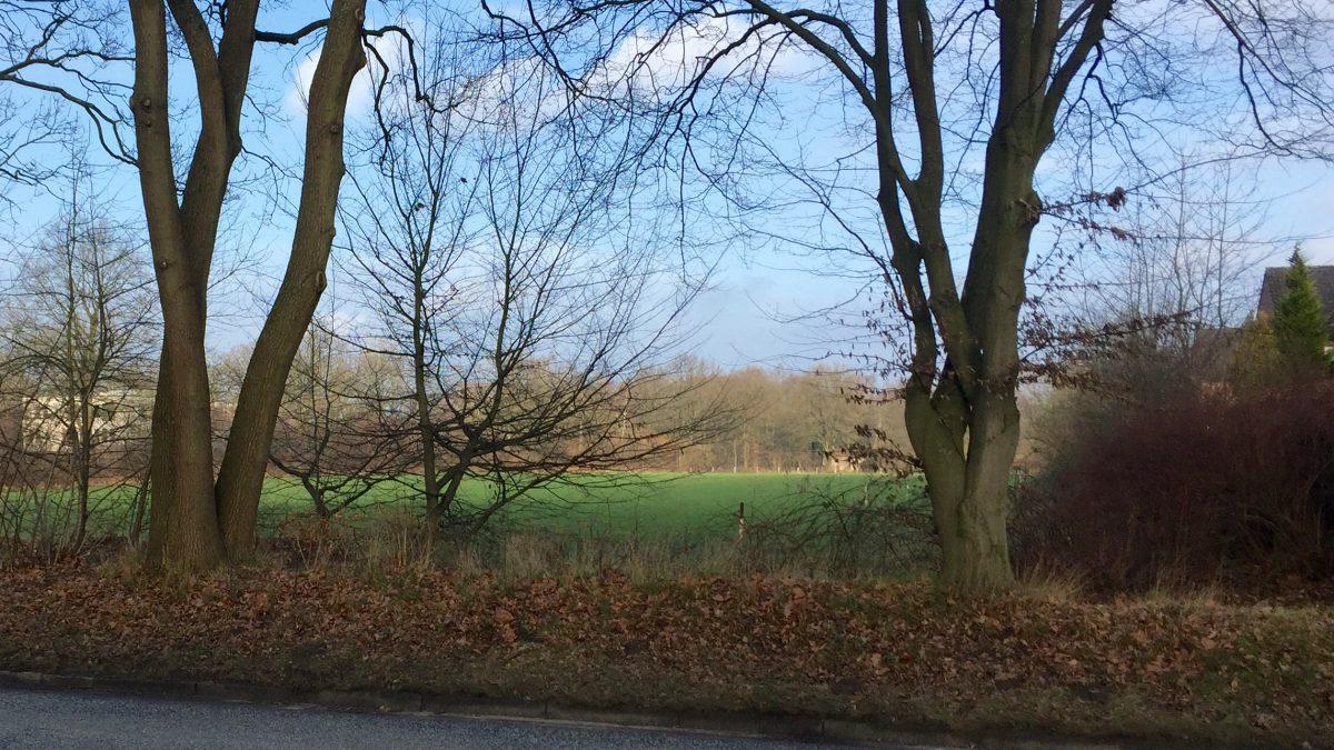 Immobilienmanagement der Stadt kauft zentrale Grünflächen in Bergstedt